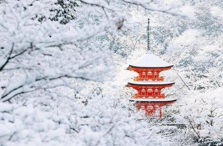 la-beaute-de-kyoto-sous-la-neige-japon-1